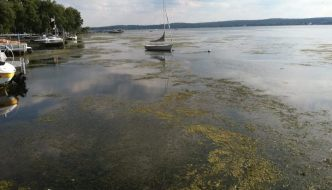 Chautauqua Institution Challenges Intervention Effort by Chautauqua Lake Partnership in Herbicide Lawsuit