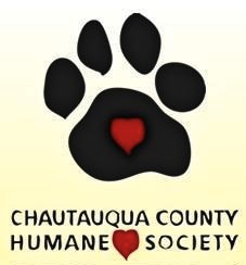 Humane Society 'Walk 4 Paws' Fundraiser Brings in $33,000