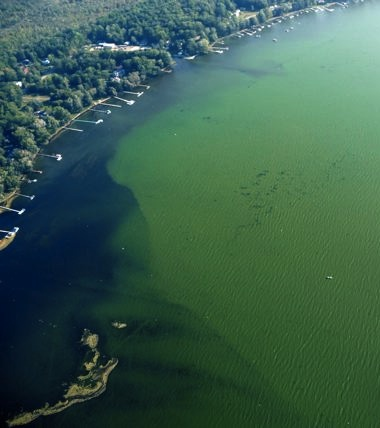 Algae bloom on Chautauqua Lake, captured in this aerial photo by John McCredie.