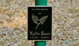 New Swing Set and Plaque Unveiled in Honor of Kallie Swan