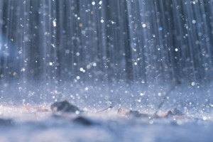 Rainy Weather Puts Several Events on Hold
