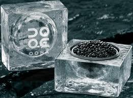 Showcasing sustainable SMEs (2) Caviar