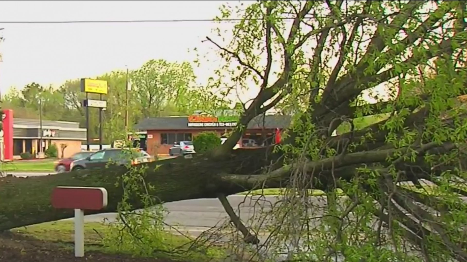 Severe_storms_bring_down_trees__power_li_0_20190415105414