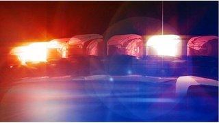 police lights2_1543944955471.jpg_64110818_ver1.0_320_240_1557964612236.jpg.jpg
