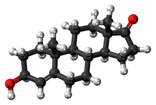 Anti-Aging – Going to War With Dehydroepiandrosterone