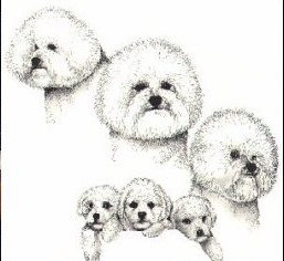 LAURA RODGERS AIRBRUSHED DOG NOTE PADS SALE!!!