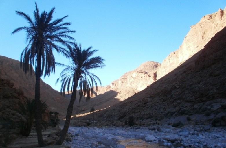 Wąwóz Todra w Maroku. Klimat Indiany Jonesa