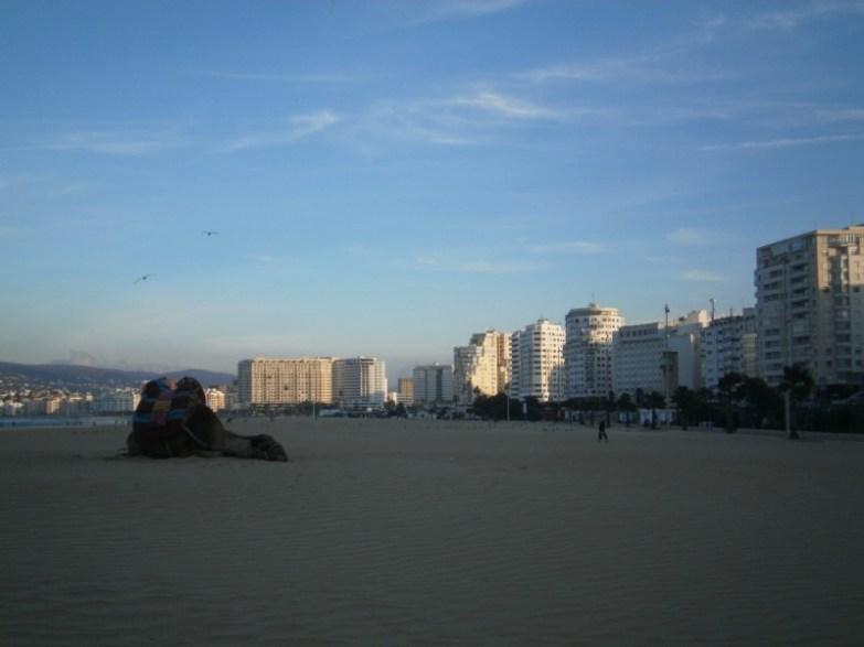 plaża w Tanger