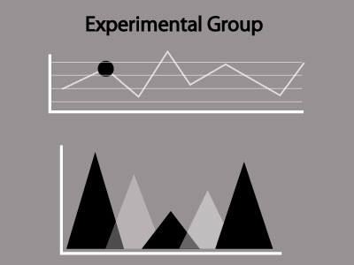 Experimental Group Definition and Explanation