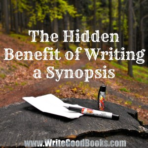 It can be so hard to write a page-long summary of your novel, but being able to write a good synopsis is a vital part of becoming an author. Not only will it help you sell your book, but it will also help you perfect it.
