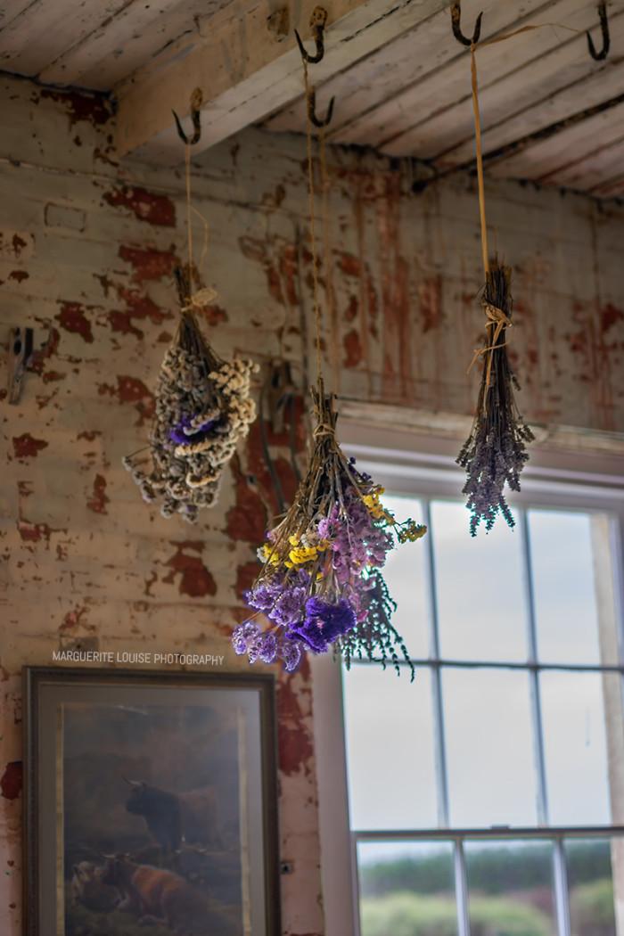 dried flowers, drying flowers, highfield house, stanley, tasmania, flowers