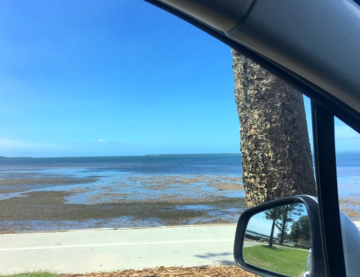 Taking Stock, Bay, Moreton Bay, Wynnum, Brisbane, Tides Out