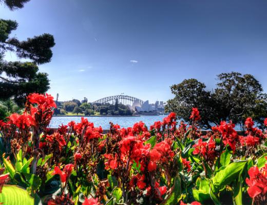 sydney, harbour bridge, australia, bridge