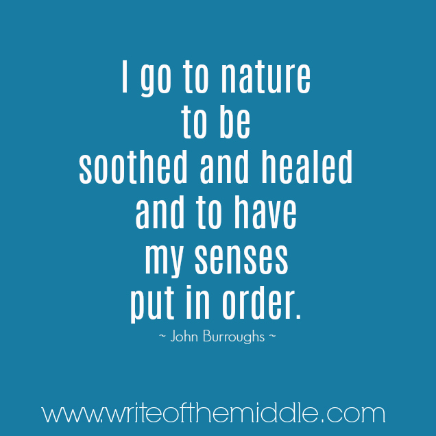 nature, calm, soothe, heal, senses, quote, quotes