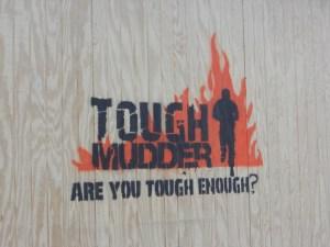 Tough Mudder: Are You Tough Enough?