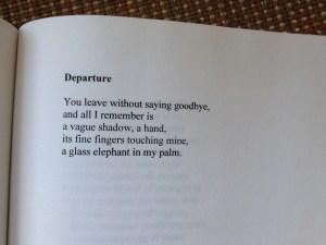 Departure by Erin Feldman