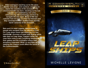 Leap Ships Print cover