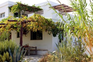 Cretan Olive Farm Stay & Retreat Garden | Agia Pelagia CRETE