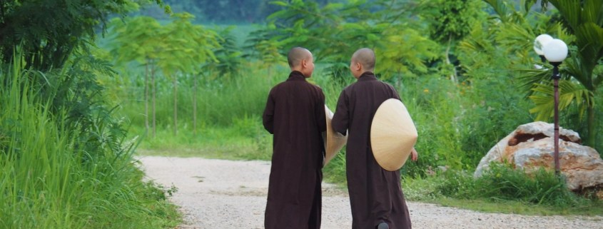 Mindfulness at Lifestyle, monastics at Thai Plum Village