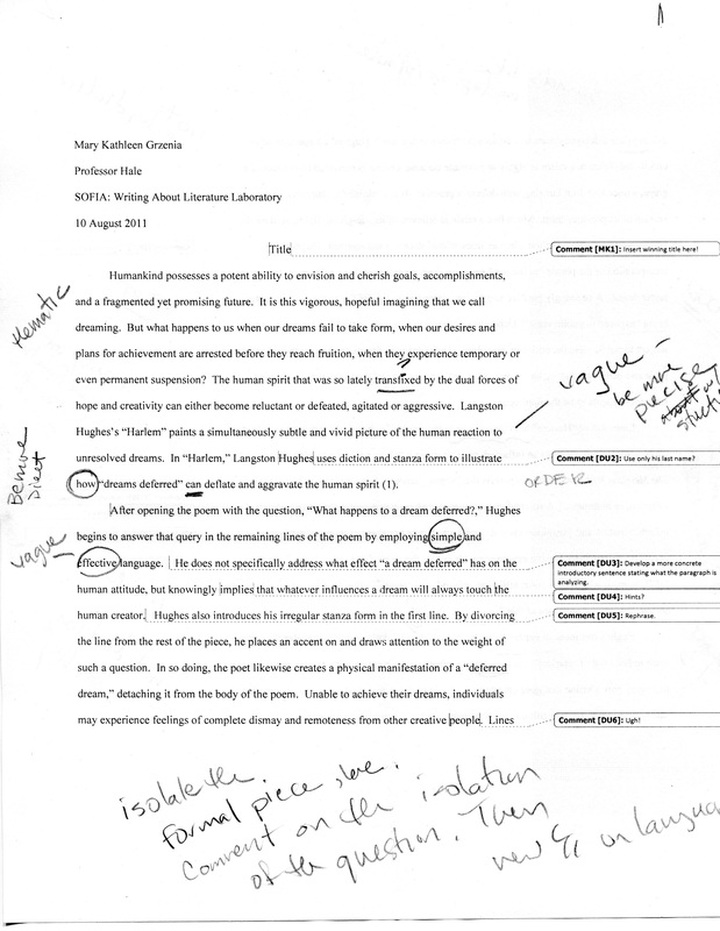 Commentary Essay Sample Hospi Noiseworks Co