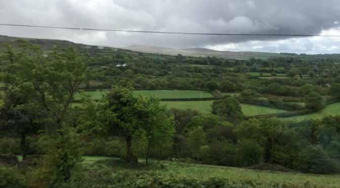 West Devon Smallholding, Day 1