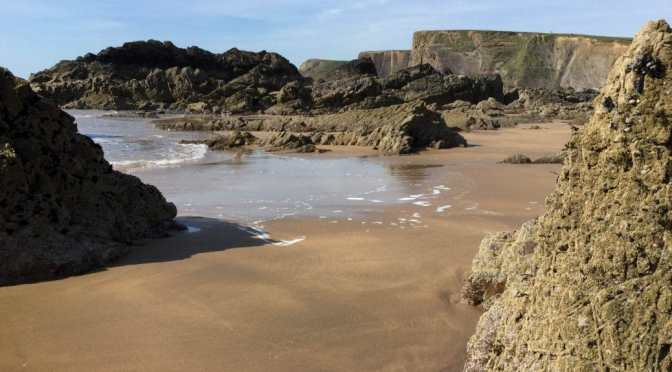 Bean wigwams, Bude, seaside and a dogfish