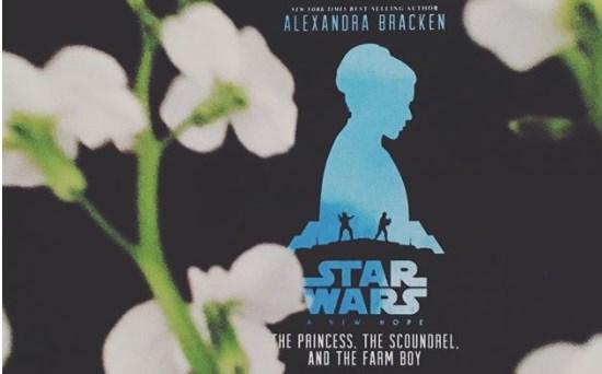 """""""Принцесата, разбойникът и фермерското момче"""" – Александра Бракен"""