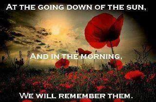 Poppy - We remember the fallen