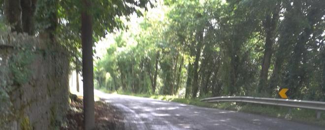 Road between Ballinamuck and Drumlish