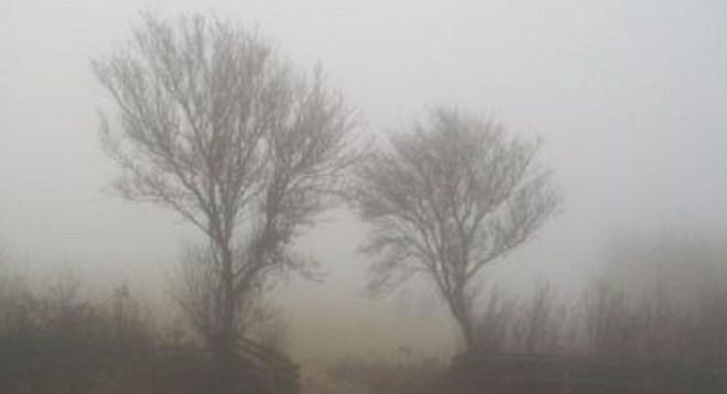 Fog on the Moor