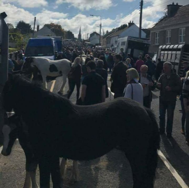 The 2017 Banagher Horse Fair - going from strenght to strenght - 2018 Fair is on September 16th