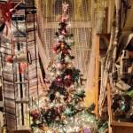 Christmas Tree in Birr