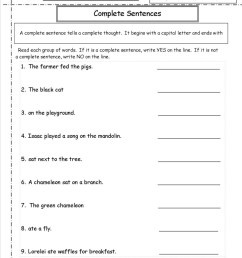 Fact And Opinion Worksheets For 5th Grade   Printable Worksheets and  Activities for Teachers [ 1325 x 1024 Pixel ]