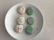 Mia's amazing moon and earth biscuits!