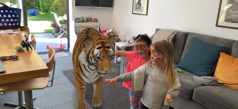 A tiger at Ruby's house