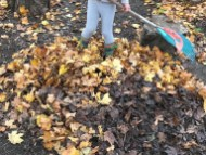 Raking leaves for our nest