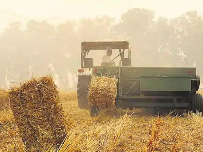 haryana agriculture