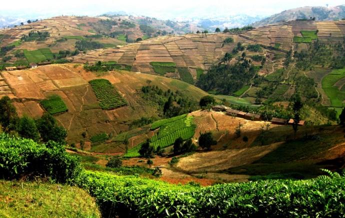 burundi flickr