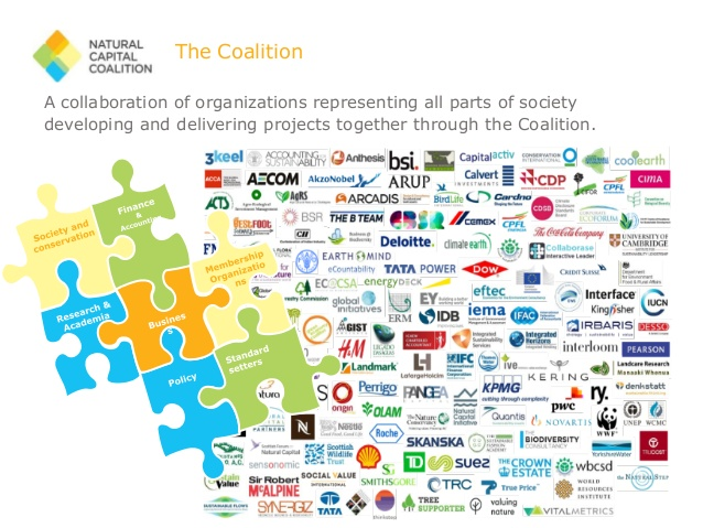 Natural Capital Coalition organizations