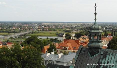 Widok z Wieży Opatowskiej