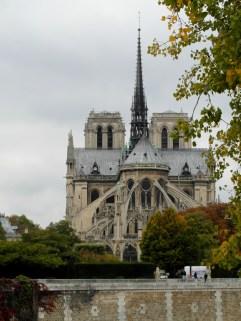 Widok na katedrę Notre Dame z Île Saint-Louis