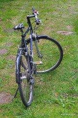 Wypożyczony rower