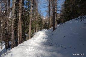 Na szlaku na górze Jafferau, luty 2020
