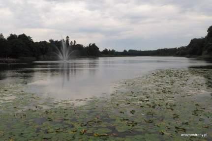 Jezioro Górne w Strzelcach Krajeńskich