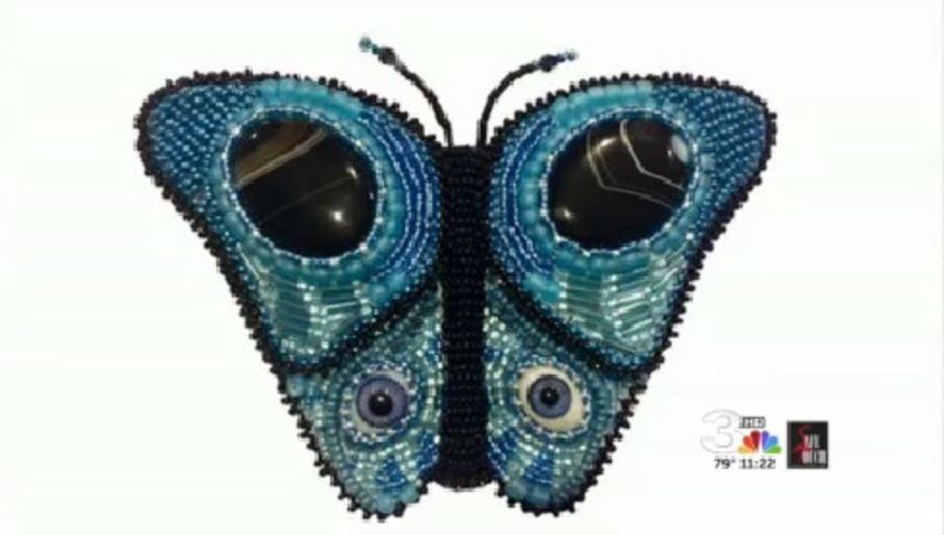 butterfly sample_258398