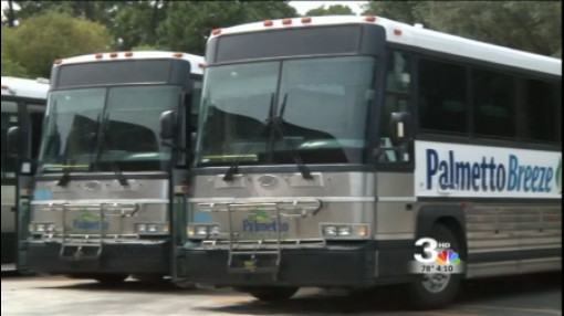 palmetto breeze buses_295411