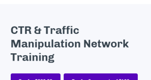 Chris Palmer – CTR and Traffic Manipulation Network Training