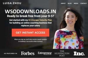 Luisa Zhou – Employee to Entrepreneur Download