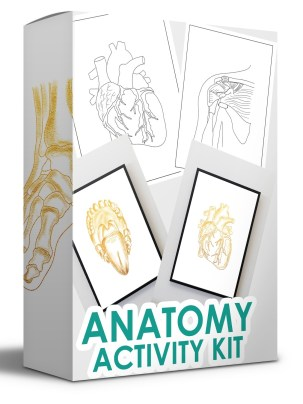 Anatomy Activity Kit - Coloring Book Free Download