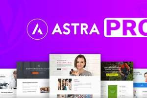Astra Pro – Responsive Multi-Purpose Theme For WordPress Free Download